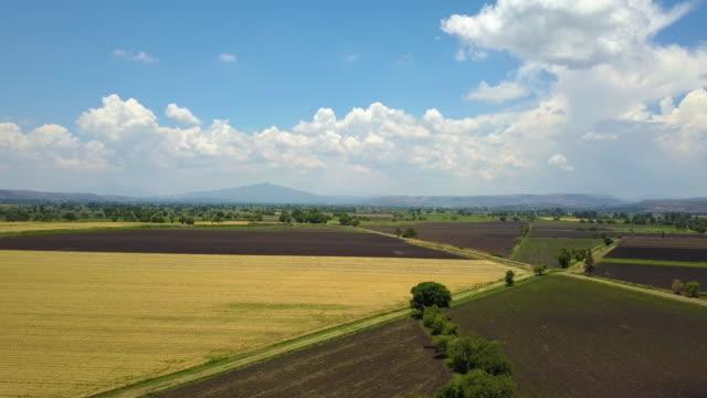 tarım alanı hava hyperlapse - tütün mamulleri stok videoları ve detay görüntü çekimi
