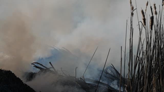 stockvideo's en b-roll-footage met landbouw. brand op het platteland - video's van bosbrand
