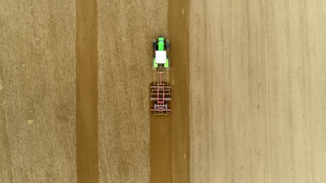 landwirtschaft und nahrungsmittelproduktion 4k - roggen stock-videos und b-roll-filmmaterial