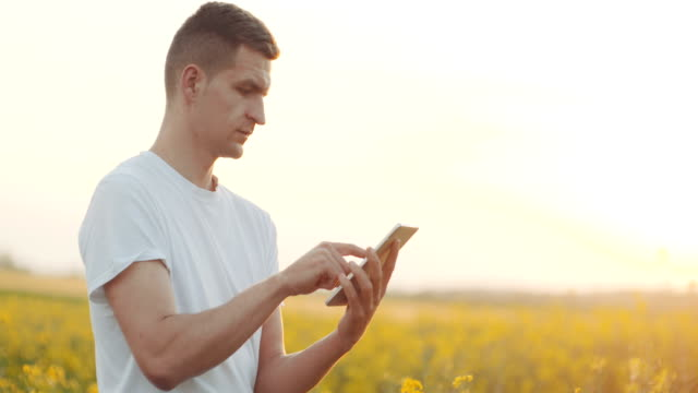 .Agriculture Technology. Farmer hands with tablet in a wheat field video
