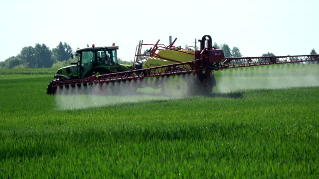 Agriculture tractor spraying  wheat field with herbicide insecticide pesticide