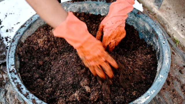 agriculturist hand shoveling compost from manure, plant, and soil in bucket - естественное условие стоковые видео и кадры b-roll