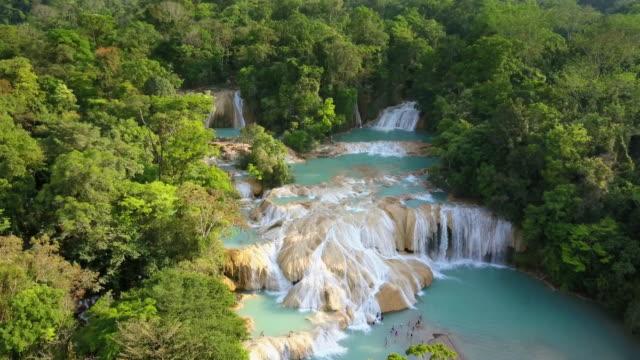 agua azul waterfalls in chiapas mexico - мексика стоковые видео и кадры b-roll