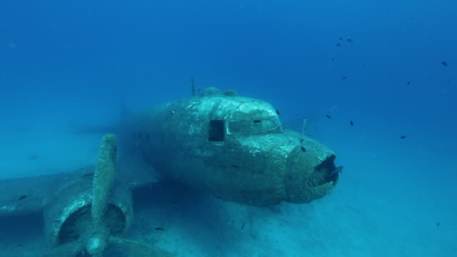 Aircraft wreck Aircraft wreck in mediterranean sea ocean floor stock videos & royalty-free footage