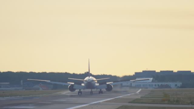 flygplan landar på tidigt på morgonen - djurkroppsdel bildbanksvideor och videomaterial från bakom kulisserna