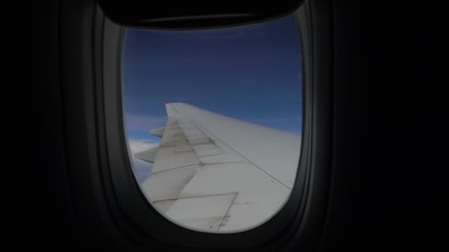 Airplane window Airplane, Flying, Aerial View, Air Vehicle, Cloud - Sky animal wing stock videos & royalty-free footage