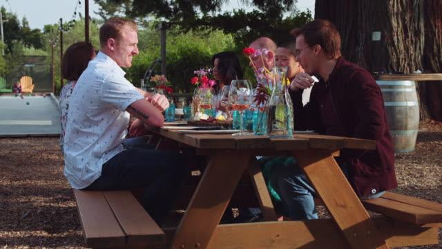 알 프레스코 와인 캘리포니아 포도-슬로우 모션에서 시음 - 와인병 스톡 비디오 및 b-롤 화면