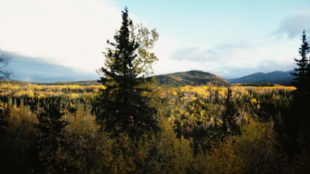 Alaska Fall video