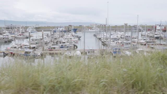 UHD 4K: Alaska fishing marina on a cloudy day video
