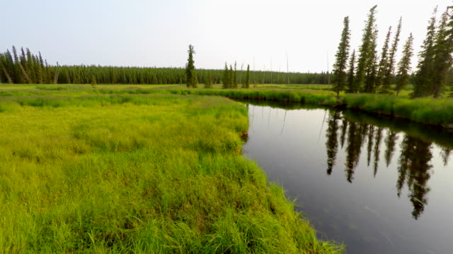 Alaska Moose River 4k drone tracking over boat tied to the green grassy shore of the lazy meandering calm slow flowing Moose River with reflections. video