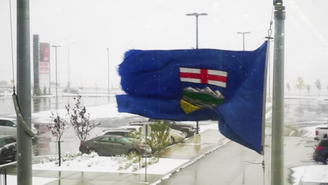 Alberta Provincial flag flying outside in snowstorm