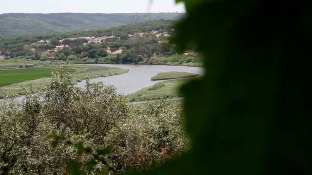 alcácer do sal rio sado - platypus bildbanksvideor och videomaterial från bakom kulisserna
