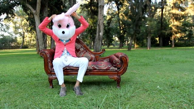 Alice in Wonderland rabbit funny video