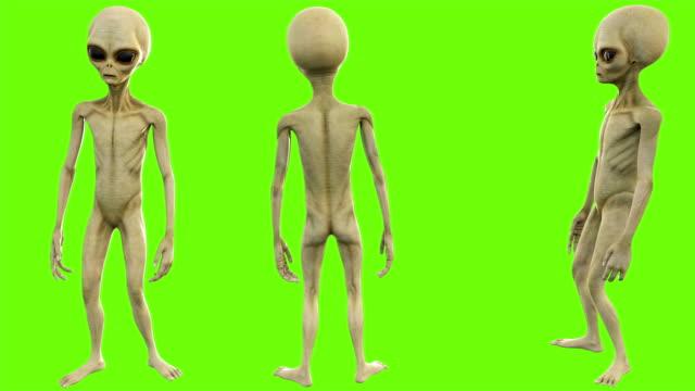 alien samtalen. loopable animation på grön skärm. 4k. - rymdvarelse bildbanksvideor och videomaterial från bakom kulisserna