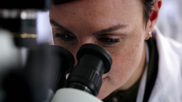 All you have to do is take a closer look 4k video footage of an attractive young female scientist looking through a microscope while working in a laboratory microscope stock videos & royalty-free footage