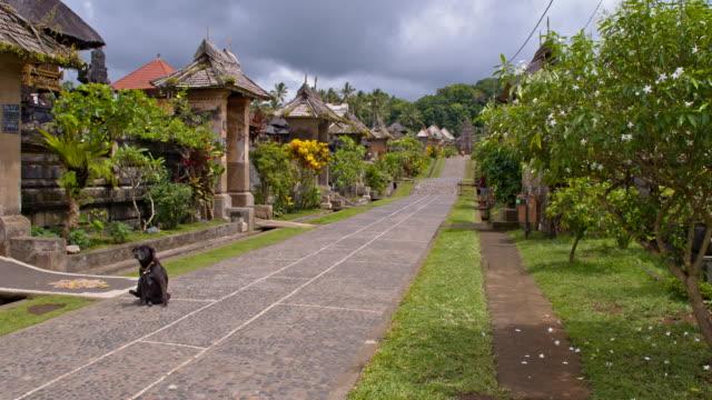 WS Alley in Balinese Village