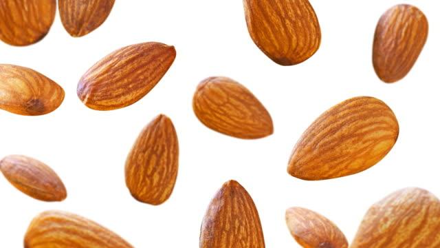 vídeos de stock e filmes b-roll de almonds falling down on white background. slow motion cg animation. 4k - amendoas