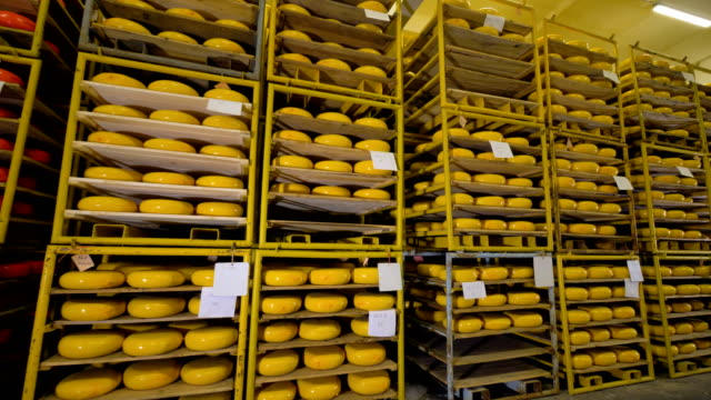 Almost completely full storage racks of cheese wheels. video