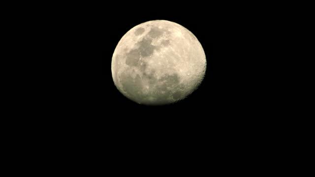 Almost full moon rising timelapse video
