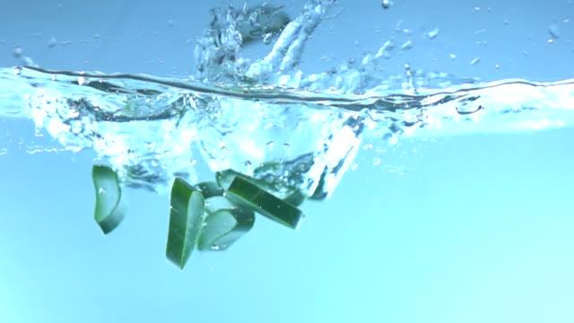 물 슬로우 모션에 떨어지는 알로에 베라 - aloe vera 스톡 비디오 및 b-롤 화면