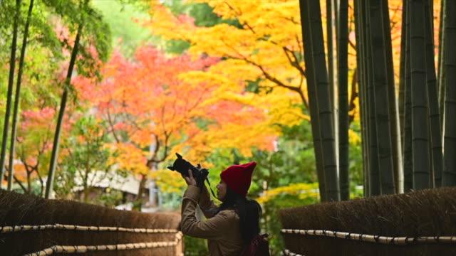 alone on the autumn