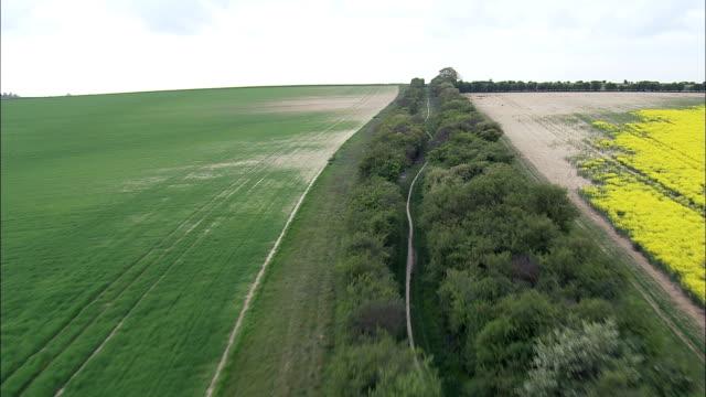 Along Harcamlow Way  - Aerial View - England, Cambridgeshire, South Cambridgeshire District, United Kingdom video