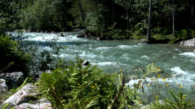 Alpine Fluvial Topografie – Video