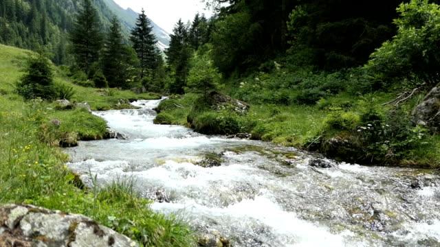 alpine mountain river flowing through schwarzachtal valley in tirol austria. - stato federato del tirolo video stock e b–roll