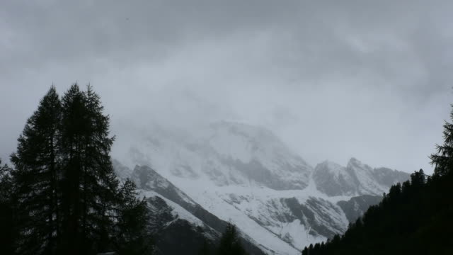 Alpine tree forest on the mountain with Alps in Samnaun, Switzerland video