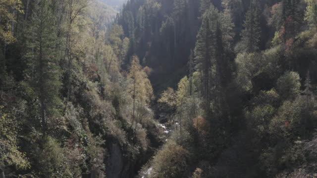 アルタイ自然保護区 - 空中写真 - アルタイ自然保護区点の映像素材/bロール