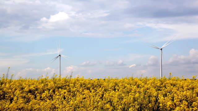 Alternative energy on yellow field