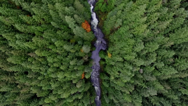 Amazing Aerial Footage Looking Straight Down Above Water Falls video