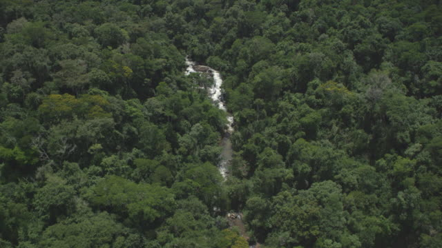 Amazing aerial shot of a misty cascade against sun light, in middle of the forest video
