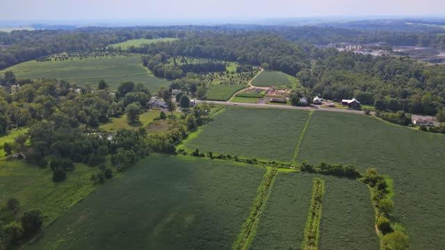 fantastiska jordbrukslandskap i det gröna fältet från en stor höjd på sommaren i flykten av över ängarna - poconobergen bildbanksvideor och videomaterial från bakom kulisserna