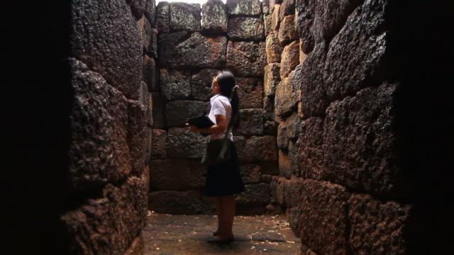 な考古学学習 - 壁点の映像素材/bロール