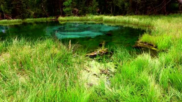Amazing blue geyser lake in the mountains of Altai video