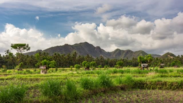 Erstaunlich schönen Wolkengebilde Timelapse mit Wolken und landwirtschaftlichen Feldern in ländlichen tropischen Bali, Indonesien in höchster Qualität (4 k UHD) /, HD-Stock-Videos – Video