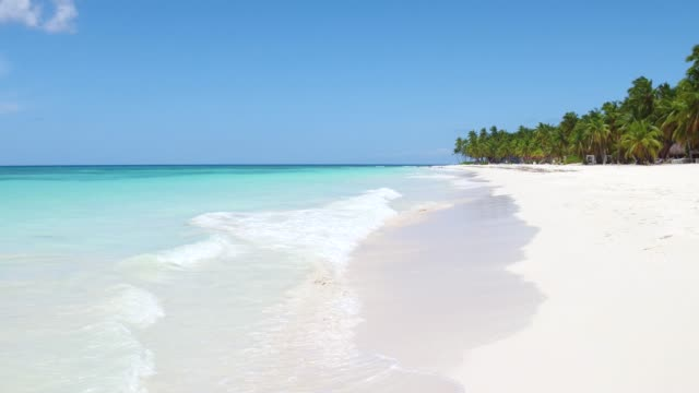 Amazing large beach with white sand and green palm trees on the shore.