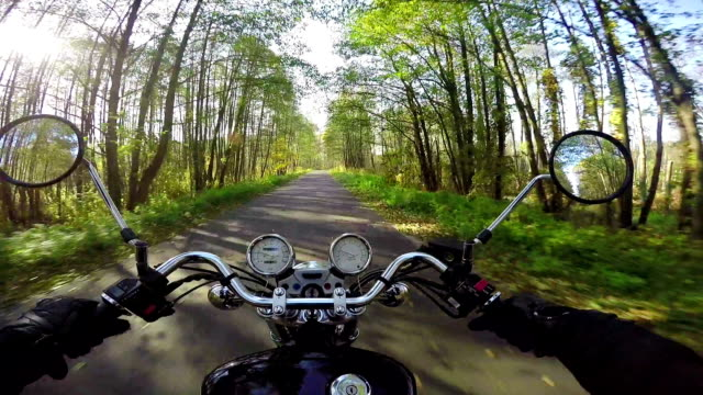 Amazing motorcycle riding towards morning sun on the beautiful forested road. Classic cruiser/chopper forever! Amazing motorcycle riding towards morning sun on the beautiful forested road. Classic cruiser/chopper forever! motorcycle stock videos & royalty-free footage