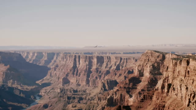 amazing panoramic background shot of big eagle flying over epic sunny view of majestic grand canyon national park usa. - aquila video stock e b–roll
