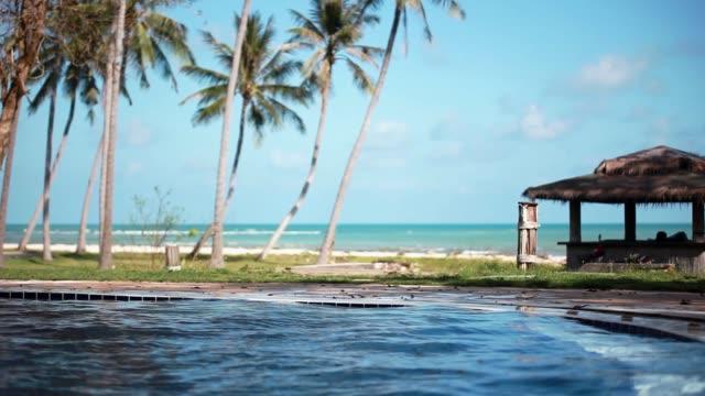 fantastisk sea view pool med infinity edge. 1920 x 1080 - på gränsen bildbanksvideor och videomaterial från bakom kulisserna
