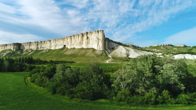 amazing view of beautiful white cliff near the green meadow with trees and shrubs against blue sky in summer. shot. picturesque summer landscape - inghilterra sud orientale video stock e b–roll