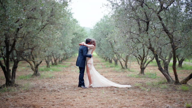 Amazing wedding frame of young married couple in love in the middle of olive tree plantation, happy newlyweds hugging each other with love and tenderness. Wedding ceremony among the nature Amazing wedding frame of young married couple in love in the middle of olive tree plantation, happy newlyweds hugging each other with love and tenderness. Wedding ceremony among the nature newlywed stock videos & royalty-free footage