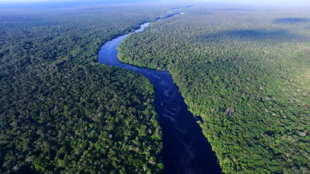 Amazon river in Brazil Amazon river in Brazil brazil stock videos & royalty-free footage