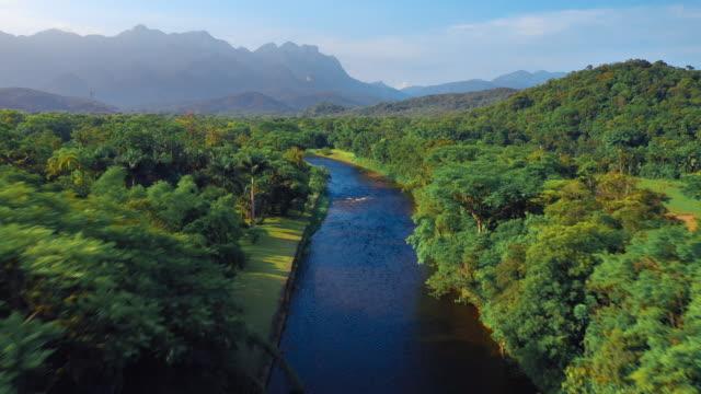 山々を背景に熱帯緑林のアマゾン川 - 雨林点の映像素材/bロール