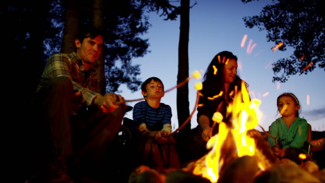 American Caucasian parent and children toasting marshmallows outdoors American Caucasian family Rockies camping toasting smores campfire tourism holiday adventure lifestyle forest outdoors RED DRAGON marshmallow stock videos & royalty-free footage