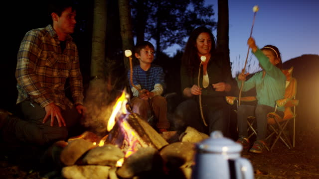 American Caucasian parent and children toasting marshmallows outdoors video