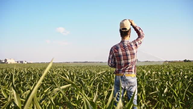 SLO MO American farmer in the field video