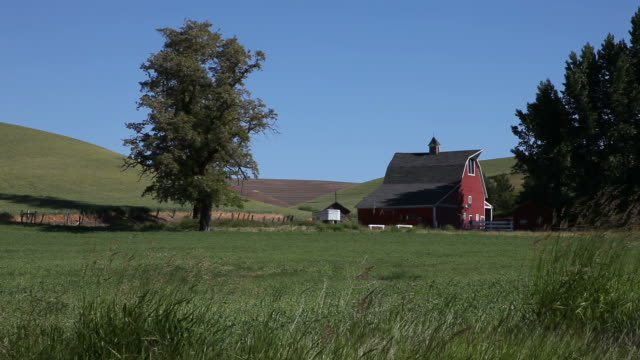 American Farmland Farmland in eastern washington state, USA. barns stock videos & royalty-free footage