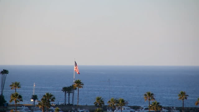 American flag and bird flying on island in Pacific Ocean video